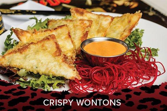 crispy-wontons